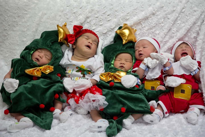 عکس روز: نورسیدهها در لباس کریسمس