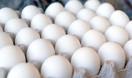 تعرفه ۵ درصدی واردات تخممرغ ابلاغ شد