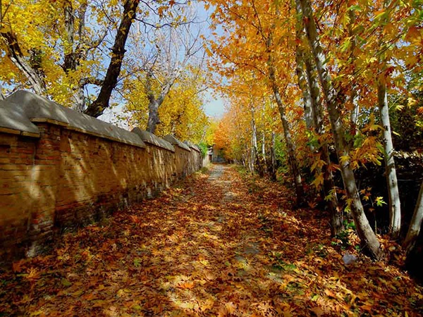 چرا معناشناسی پاییز مهم است؟
