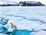 روند نابودی یخ و برف قطب شمال برگشتناپذیر است