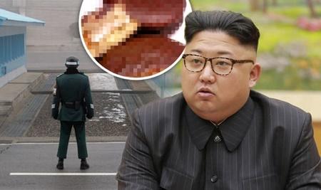 شیرینی های ممنوعه در کره شمالی