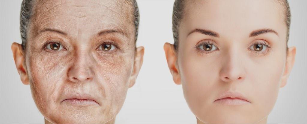 کشف تفاوت شخصیت انسان در ۱۴ سالگی و ۷۷ سالگی