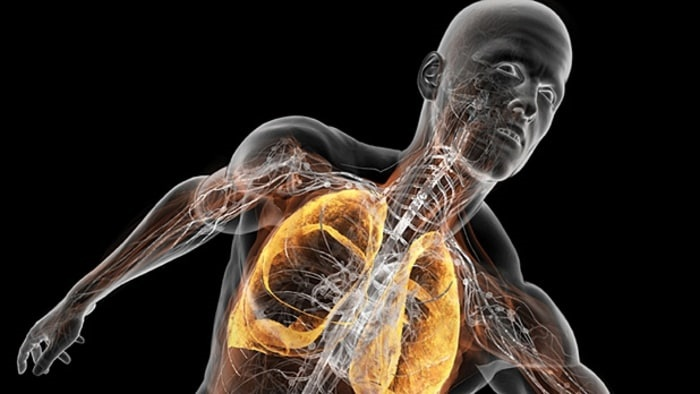 یک روش تشخیصی سریع برای شناسایی عامل عفونتهای تنفسی