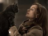 جایزه سزار   اسکار سینمای فرانسه به فیلم او  رسید