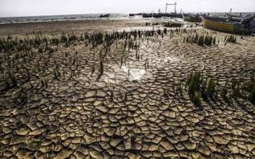 خشک شدن یک میلیون هکتار ار تالابهای کشور کانونهای اصلی گرد و غبار