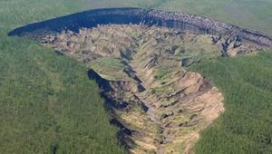 """کشف جنگل باستانی در دل """"دروازه جهان زیرزمین"""""""