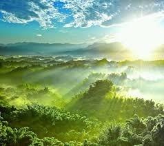 باریکه نور امید