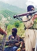 درخواست طالبان برای درختکاری
