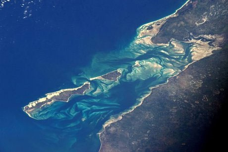 هشدار تغییر رنگ بزرگترین مجموعه مرجانی جهان