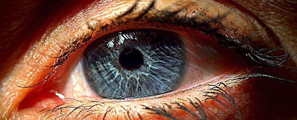 ابداع شبکیه مصنوعی که نابینایی را درمان میکند