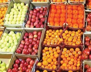 توزیع میوه شب عید تا پایان فروردین ۹۶