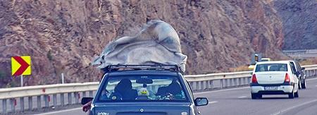 مسافران نوروزی با اطلاع کامل از شرایط جوی سفر کنند