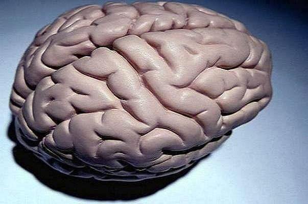 ارتباط اختلالات ایمنی با ریسک زوال عقل