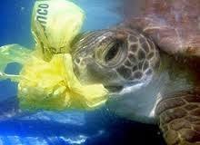تعهد یک میلیارد دلاری اندونزی برای کنترل زبالههای اقیانوسی
