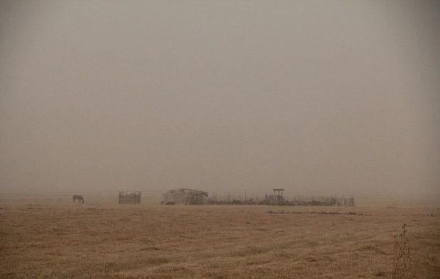 خسارت گسترده ریزگردها به کشاورزی خوزستان
