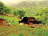 جنگلهای زاگرس دارای بالاترین نرخ فرسایش