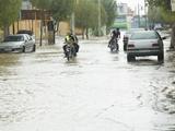 بوشهر؛ هشدار درباره آبگرفتگی معابر و تندبادهای لحظهای