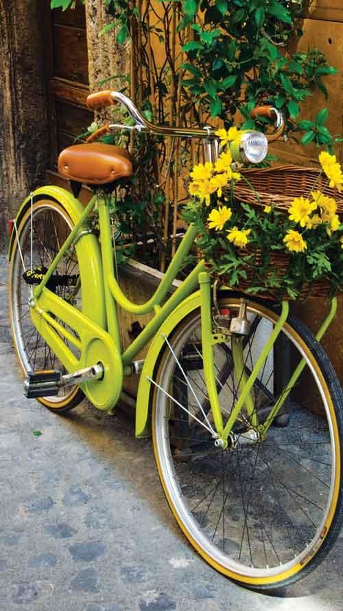 دوچرخه شماره ۸۷۲