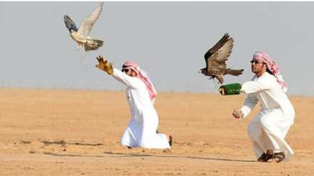 گزارشها از آزادی شکارچیان ربوده شده قطری در بغداد حکایت دارد