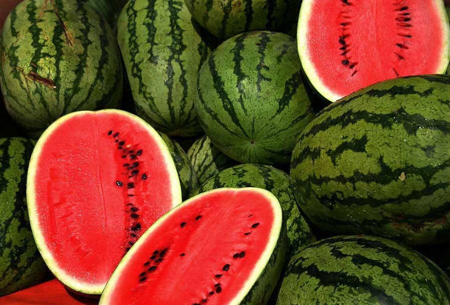 استفاده از پودر بهداشتی در رشد هندوانه محال است