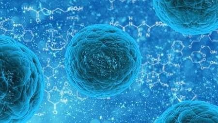 سلول های بنیادی