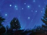 صاحب ستارههای چشمکزن!