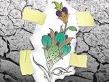 پاسداری از میراث ناملموس برای حفظ محیط زیست