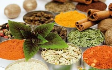 فروش محصولات طب سنتی فاقد مجوز؛ ممنوع