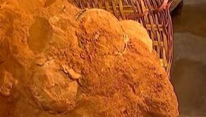 کشف فسیل ۷۰ میلیون ساله تخم دایناسور در چین