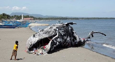 هشدار درباره زبالههای پلاستیکی با ساخت مجسمه نهنگ مرده