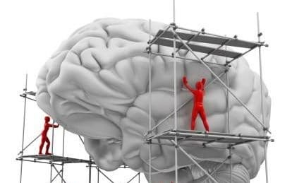 شناسایی مکانیسم پیش بینی مغز