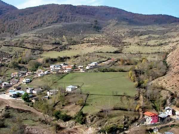 کوه و جنگل در تصرف زمینخواران دانهدرشت