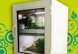 طراحی باغچه هوشمند سبزی خانگی در کشور