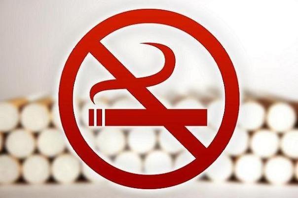 دخانیات سالانه ۷ میلیون قربانی میگیرد