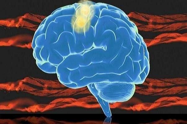 مغز انسان به تولید فروکتوز کمک میکند