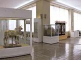 رخوت و رکود بر موزهداری ایران حاکم است