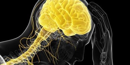 مجله روانشناسی,سلامت,سازمان جهاني بهداشت,افسردگي
