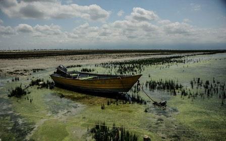 تالاب میانکاله و خلیج گرگان در شرایط بحران قرار دارند