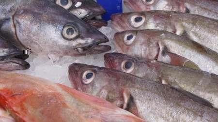 مصرف ماهی سرطانزا در تایلند