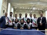 مسابقات ورزشی کارگران جهان/ لتونی؛ کسب  مدال برنز در تنیس روی میز