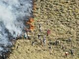 هشدار محیط زیست استان زنجان نسبت به آتشسوزی جنگلها