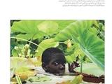 ویژهنامه تابستانی ماهنامه داستان همشهری با موضوع آفریقا منتشر شد