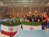۳ طلا و ۱ نقره حاصل کار تیم های ملی تنیس روی میز پیوند اعضا