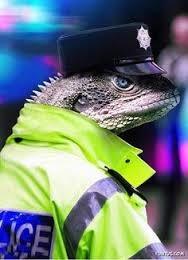 استخدام مارمولک بهعنوان پلیس
