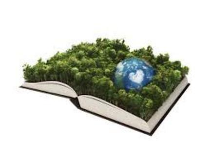 تدریس درس شناخت محیط زیست در دانشگاهها و موسسات آموزش عالی