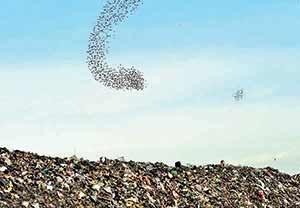 خطردفن زباله شهرهای کشور را تهدید میکند