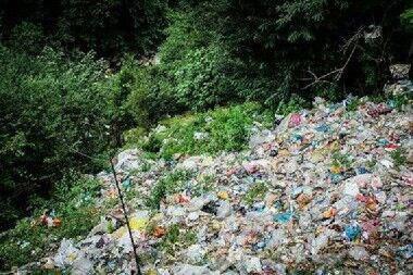 جولان زبالههای سرگردان در طبیعت سبز گیلان