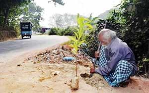 مردی که هر روز یک درخت میکارد