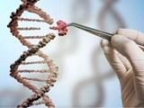 تأثیر ژن در موفقیت زندگی افراد
