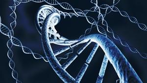 ورود ۶۵ میلیون دلاری دارپا به جهان ویرایش ژنتیکی